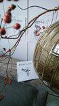 Op de Maalzolder - Karten Botanical A6 s/4