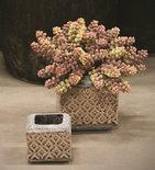 PTMD - Shane cream ceramic pot square tall s