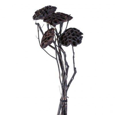 PTMD - Getrocknete Blumen schwarz