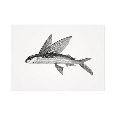 Mélisse - Karte Der Atlantische fliegende Fisch