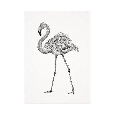 Mélisse - Karte Der rote Flamingo