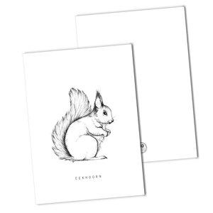 BDdesigns-Kaart-Eekhoorn