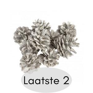 distelroos-PTMD-666241-xmas-pine-white-pinecones-9x